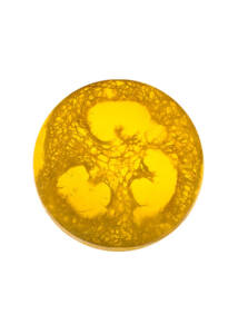 Rose Fantasy Tengeri Szivaccsal - Lemon