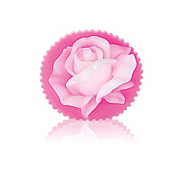 Rose Fantasy - Rose blossom pink/fehér